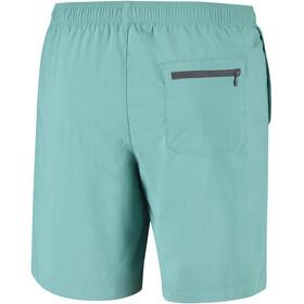 Columbia Roatan Drifter - Bañadores Hombre - verde